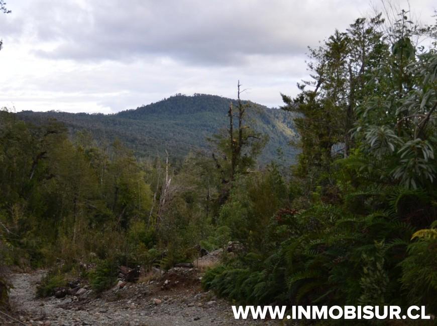 Venta en Puerto Montt | Campo en Correntoso en 251 | Campo en Correntoso